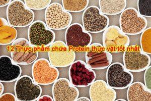protein thực vật, đạm thực vật herbasoul